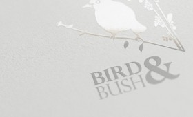 The Bird & Bush